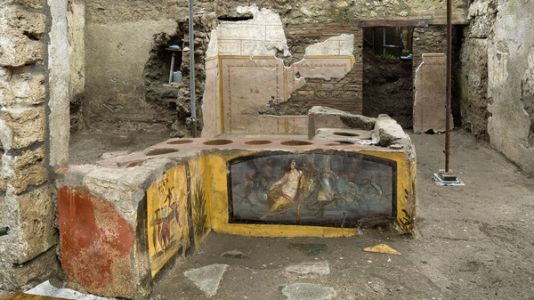 What's On The Menu In Ancient Pompeii? Duck, Goat, Snail, Researchers Say