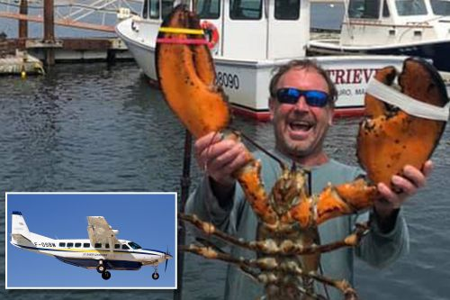 Cape Cod lobsterman swallowed by whale also survived deadly Costa Rica plane crash in 2001
