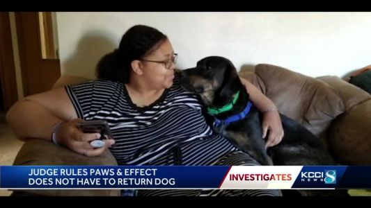 Judge: Family failed to prove Paws & Effect possesses dog despite 'dubious' actions