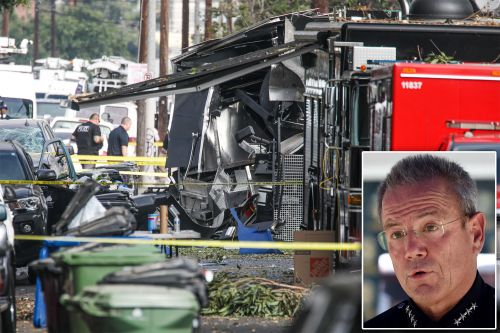 LAPD bomb squad likely caused destructive fireworks explosion, chief says