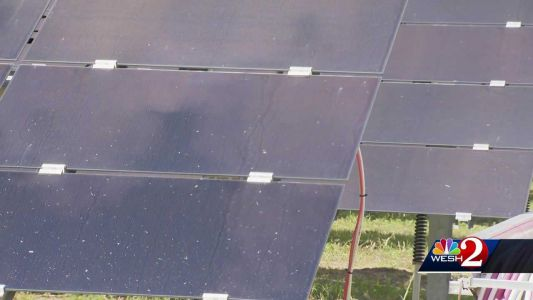 Inside look: Walt Disney World's solar farm