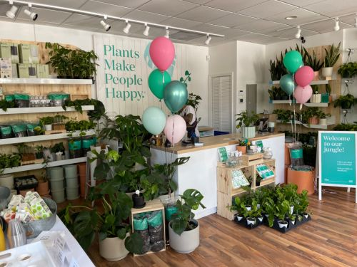 The Sill in the Southport Corridor will help you find your happy place