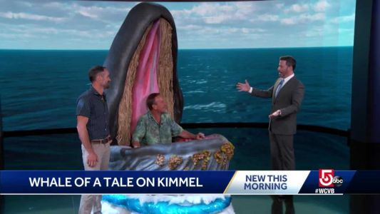 Lobster diver has second experience in whale's mouth on 'Kimmel Live'