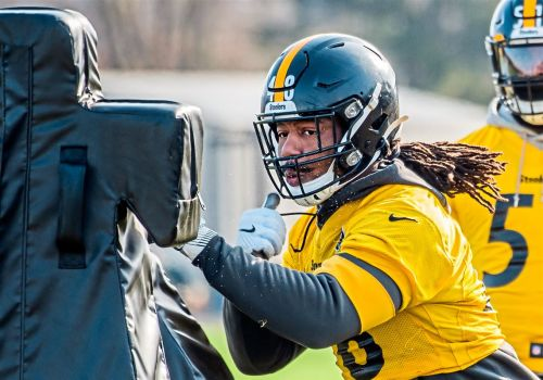 Ron Cook: Don't take it personally if Bud Dupree wants more money