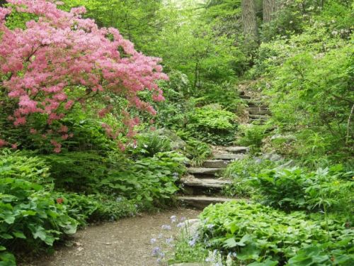 3 great day trips to spring blooms