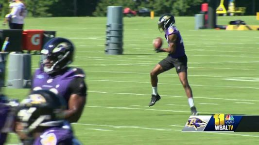 Is the Ravens' D too nice? They don't think so