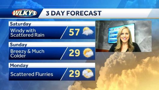 Mild and Damp Weather Today
