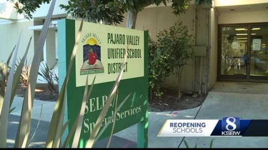 Recall process begins for controversial PVUSD trustee