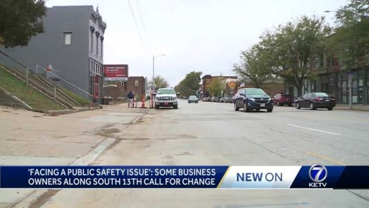 'Facing a public safety issue': Business owners along South 13th call for change