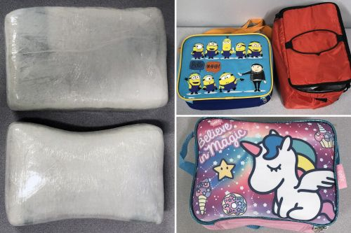 NYC cocaine smuggling ring allegedly used kid's lunchboxes to hide drugs