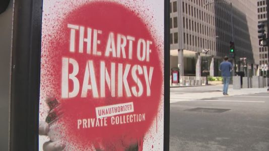 Art of Banksy ticket holder refunded after venue confusion