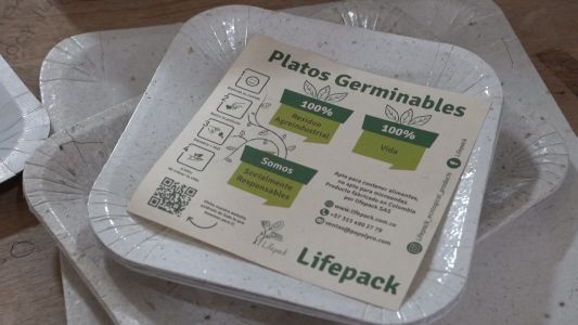 Plates made from biodegradable scraps grow edible plants