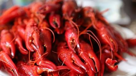 New Orleans offers free CRAWFISH to people who get first shot of Covid-19 vaccine