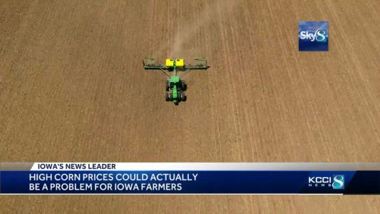 High corn prices may cause problems for Iowa farmers
