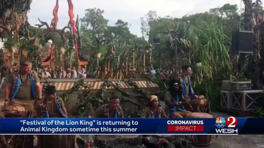 'Festival of the Lion King' is returning this summer to Animal Kingdom