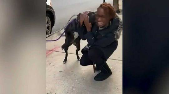 WATCH: Dog gets excited when she's reunited with her owner nearly a year after running away