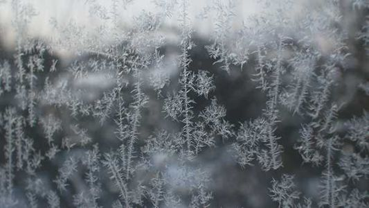 Coldest weather in months: Temps in the 30s bring first frost of the season