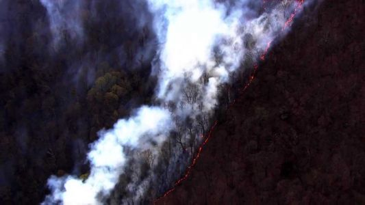 WATCH: Forest fire in Ohiopyle State Park in Fayette County