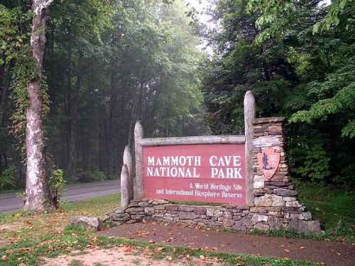Former Mammoth Cave worker sentenced for stealing from park