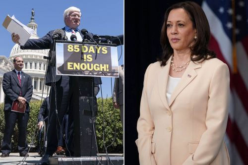 56 House Republicans demand Kamala Harris be removed from border crisis role