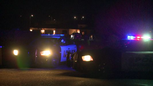 Homeowner shoots person trying to break into home