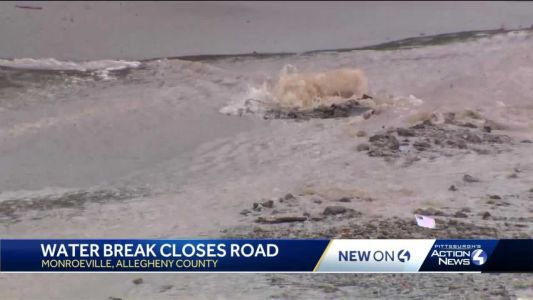 Multiple areas affected after water main break in Monroeville