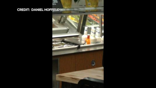 'He Also Likes The Bacon Bits': Bird Seen Eating From Twin Cities Supermarket Salad Bar