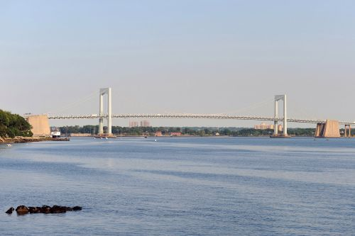 Dog tied to cinderblock found dead in East River
