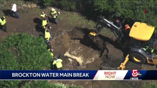 'It was brown,' business owner says after water main break
