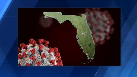 More than 73,000 new COVID-19 cases reported in Florida, positivity rate increases