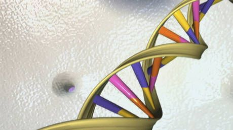 DNA 'echoes' of ancient viruses could help to kill cancer, new research finds