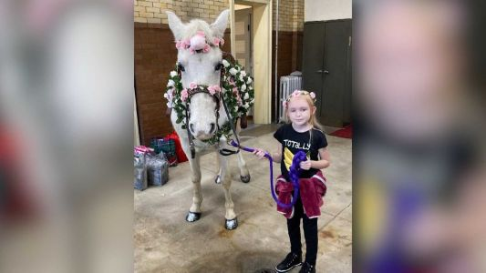Girl with stage 4 brain cancer checks item off bucket list by meeting 'unicorn'