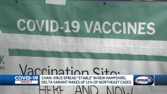 COVID-19 virus stable in NH for now, epidemiologist says