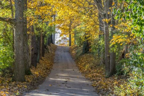 It's Officially the First Day of Fall. Here Are 4 Things You Should Know About Autumn