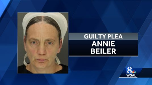 Pennsylvania woman pleads guilty to animal cruelty for having dogs debarked