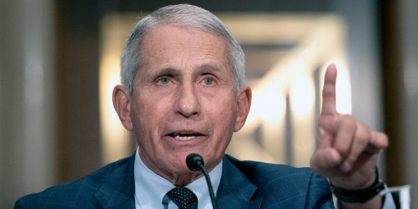 Fauci rips into Sen. Rand Paul: 'You do not know what you're talking about, quite frankly, and I want to say that officially'