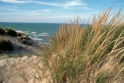 Girl dies, 2nd critical after rough waters hit Lake Michigan