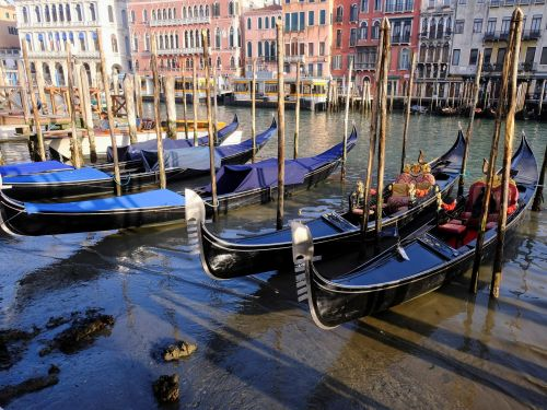Venice's world-famous 'streets of water' left dry after dramatic low tides drained its canals