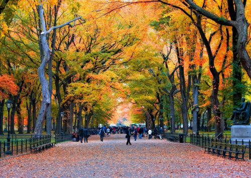 Breathtaking fall scenes from around the world