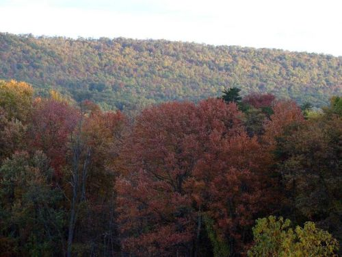 Take fall tour of one of Pa.'s newest state parks