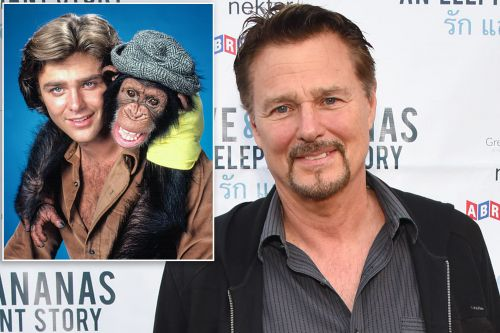 Greg Evigan says '70s sitcom 'B.J. and the Bear' wouldn't be made today
