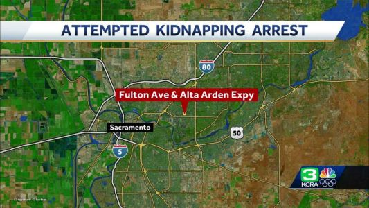 Sacramento sheriff: Woman tried kidnapping child from 2 others