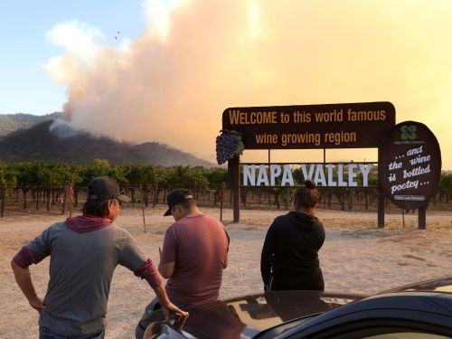 Photos show an astonishing scale of devastation in Northern California's wine country, where the Glass Fire has torched entire warehouses, tasting rooms, and vineyards