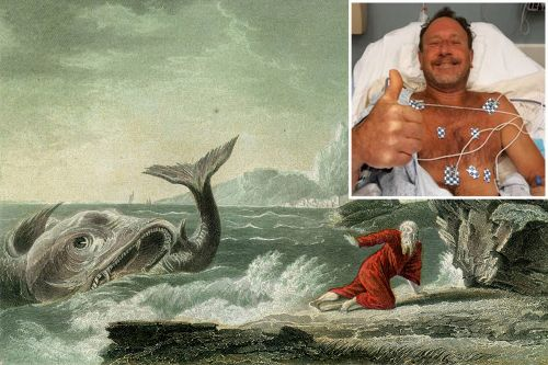 Lobster diver 'gulped by humpback' says Matt Damon could play him in movie