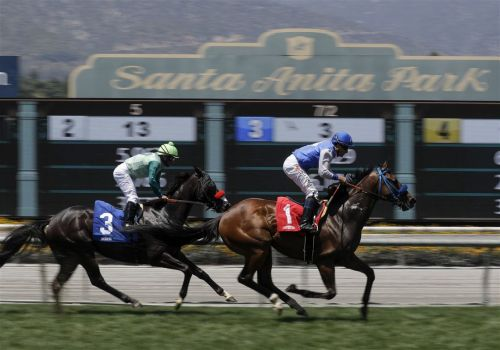 Horse fatally injured in race at Santa Anita; 34th to die at track