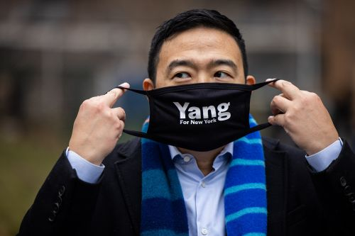NYC mayoral contender Andrew Yang hawked bidets on podcast