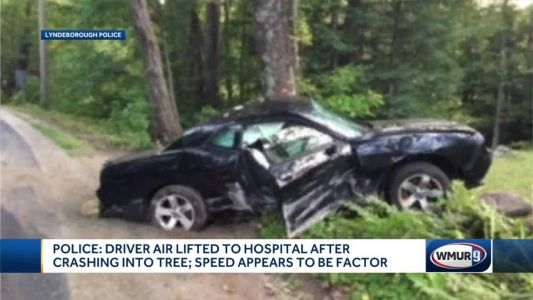 Driver airlifted after crashing into tree in Lyndeborough