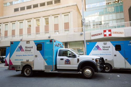 Mount Sinai contends with bedbug outbreak in rehab area