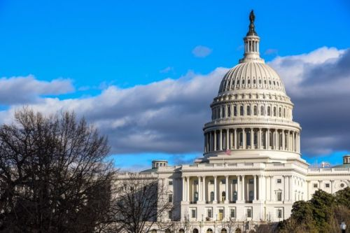 Stanford scholars react to Capitol Hill takeover