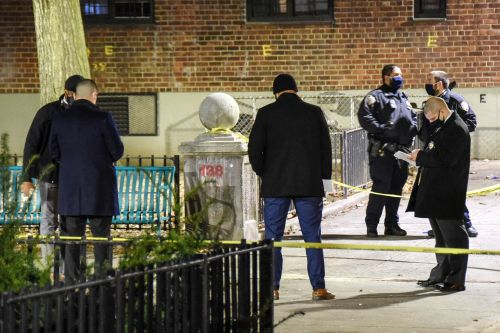 Man, 24, shot dead outside NYCHA building: NYPD